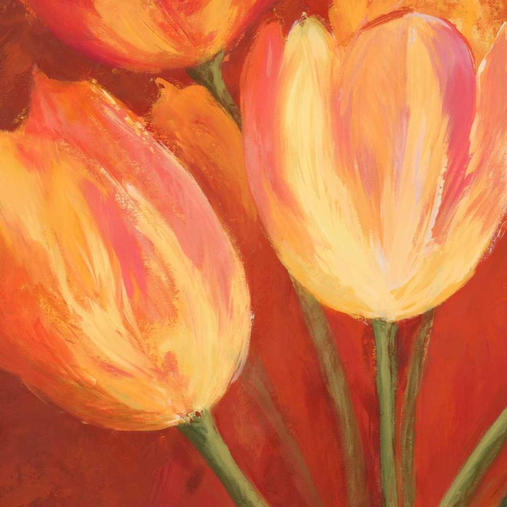 Orange Tulips (detail) Mei, Silvia 162867