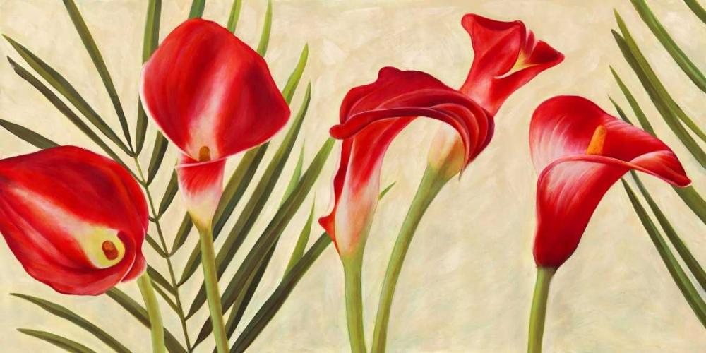 Red Callas Thomlinson, Jenny 42878