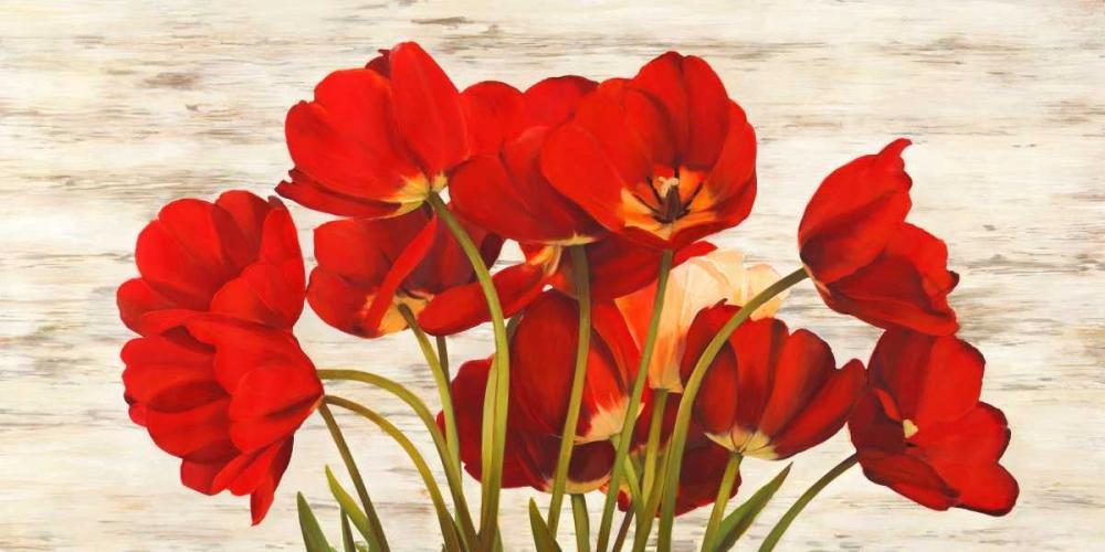 French Tulips Biffi, Serena 42842