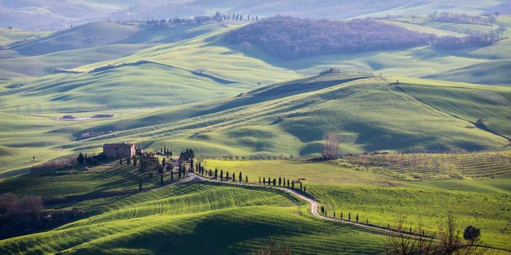 A road in Tuscany Ratsenskiy, Vadim 43064