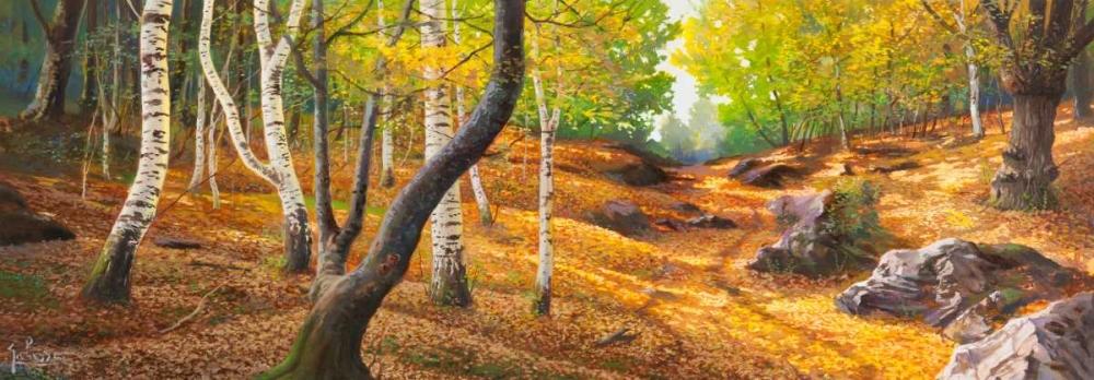 Sentiero nel bosco Galasso, Adriano 44259