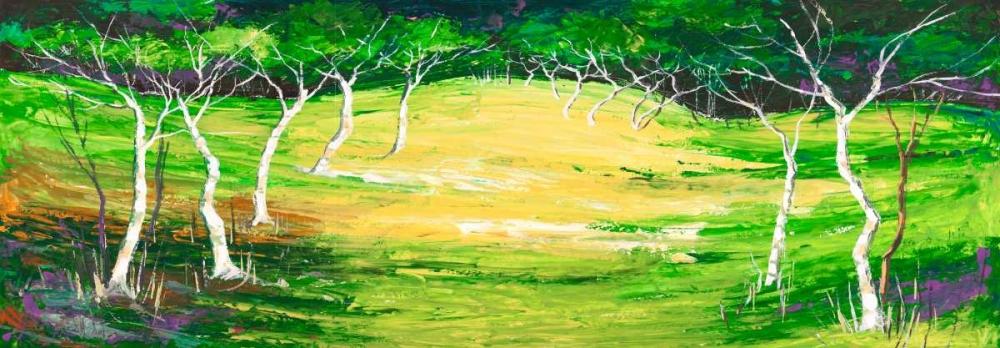 Foresta verde Lucas 43401