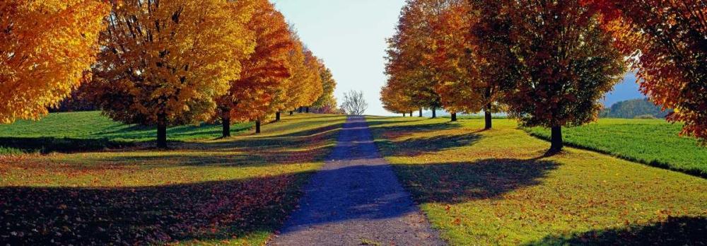 Autumn Road Storm King Mountain New York Berenholtz, Richard 44294