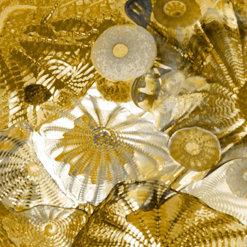 Underwater Perspective in Gold II Carter, Charlie 52444