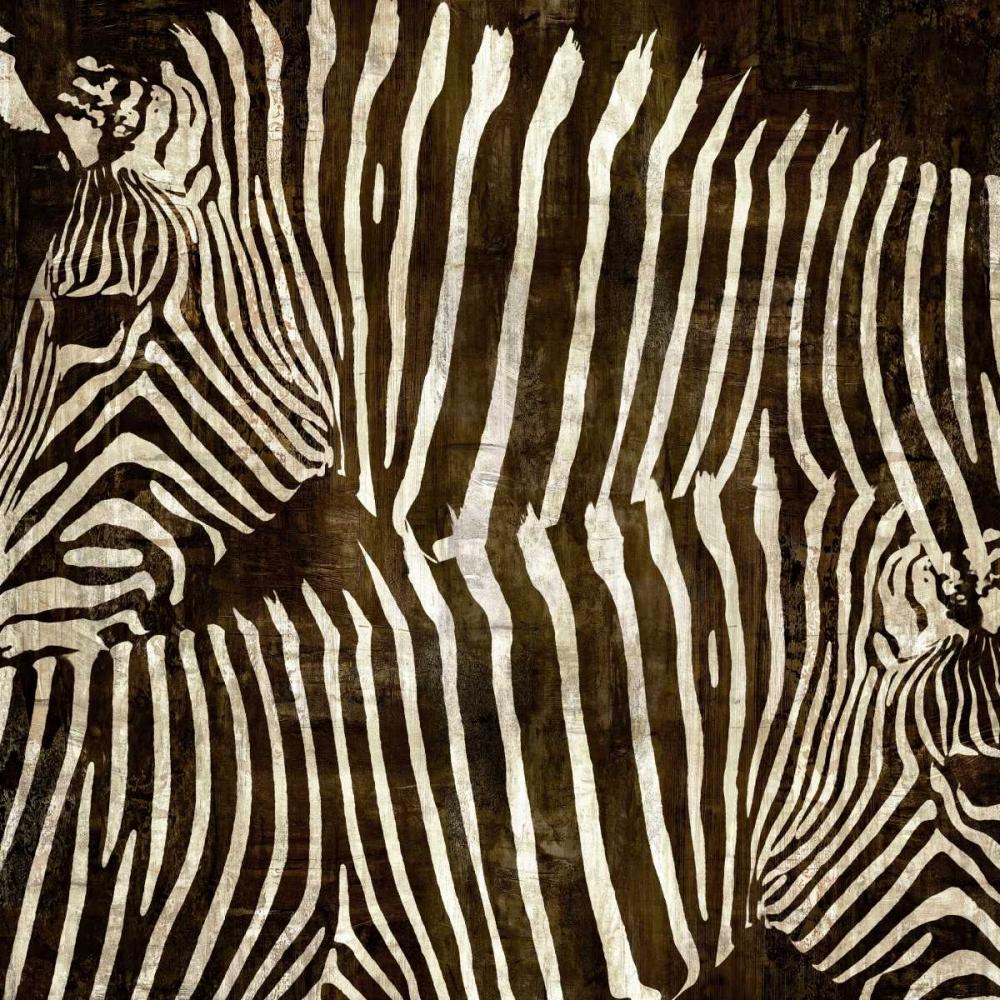 Zebras Davison, Darren 52690