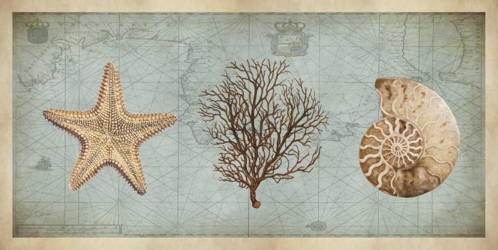 Sea Treasures II Devellier, Deborah 54217