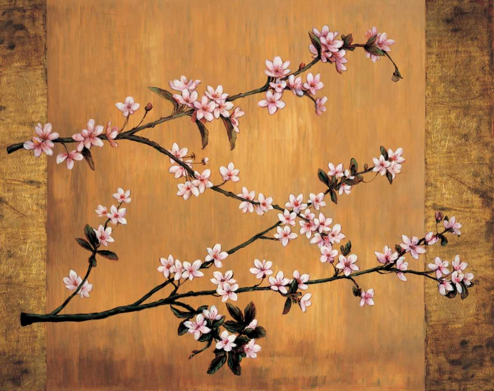 Cherry Blossoms Lange, Erin 54302