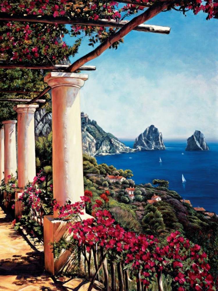 Pergola in Capri Wright, Elizabeth 54277