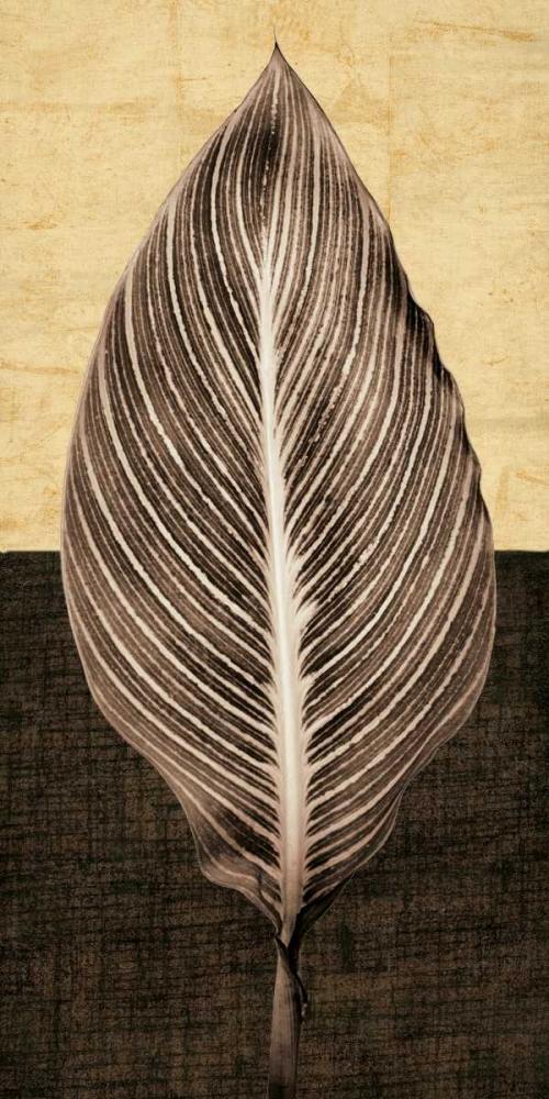 Palm Leaf I Seba, John 54689