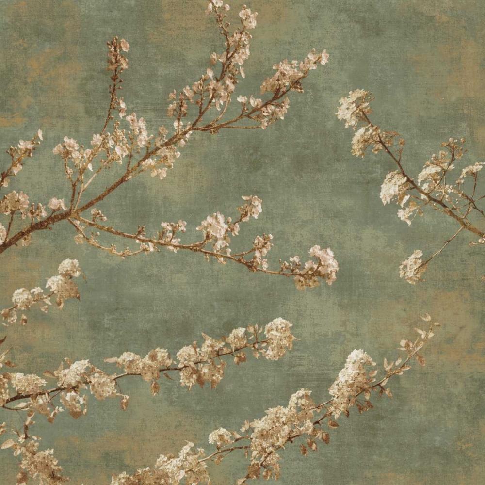 Morning Blossom II Seba, John 54739