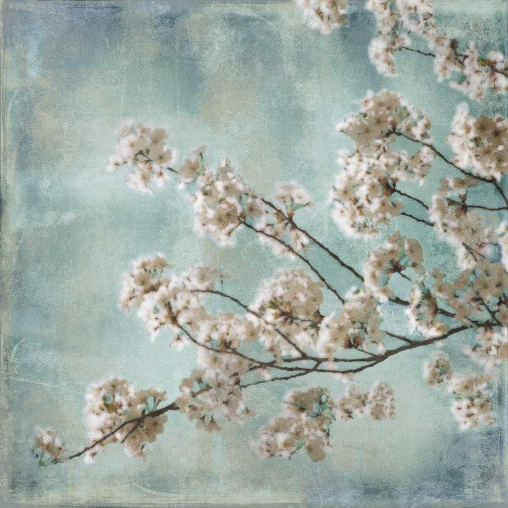 Aqua Blossoms I Seba, John 54781