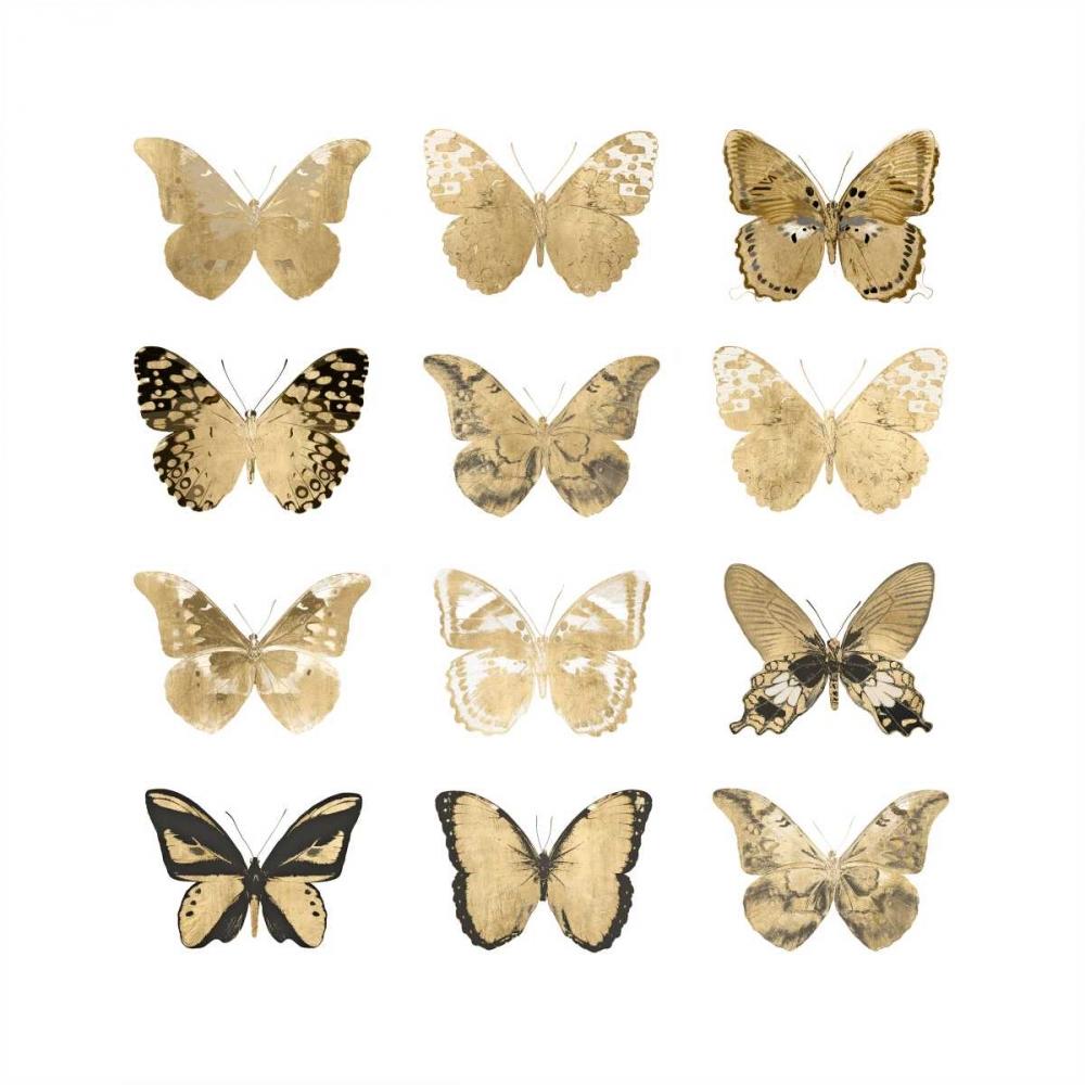 Butterfly Study in Gold II Bosco, Julia 125143
