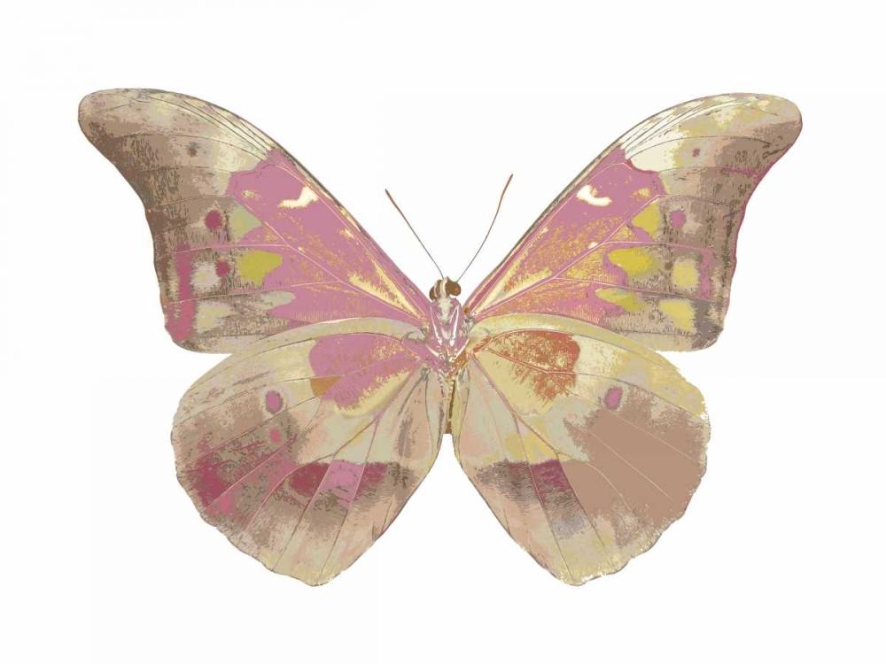 Butterfly in Grey IV Bosco, Julia 125156