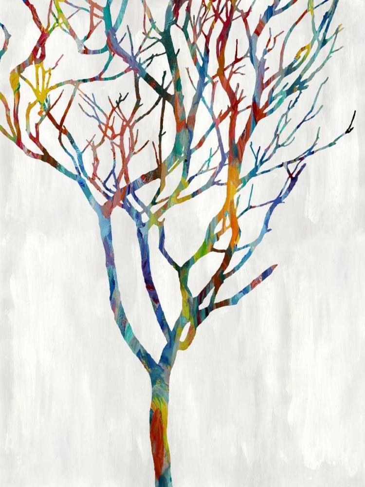 Branches I Webster, Kyle 88074