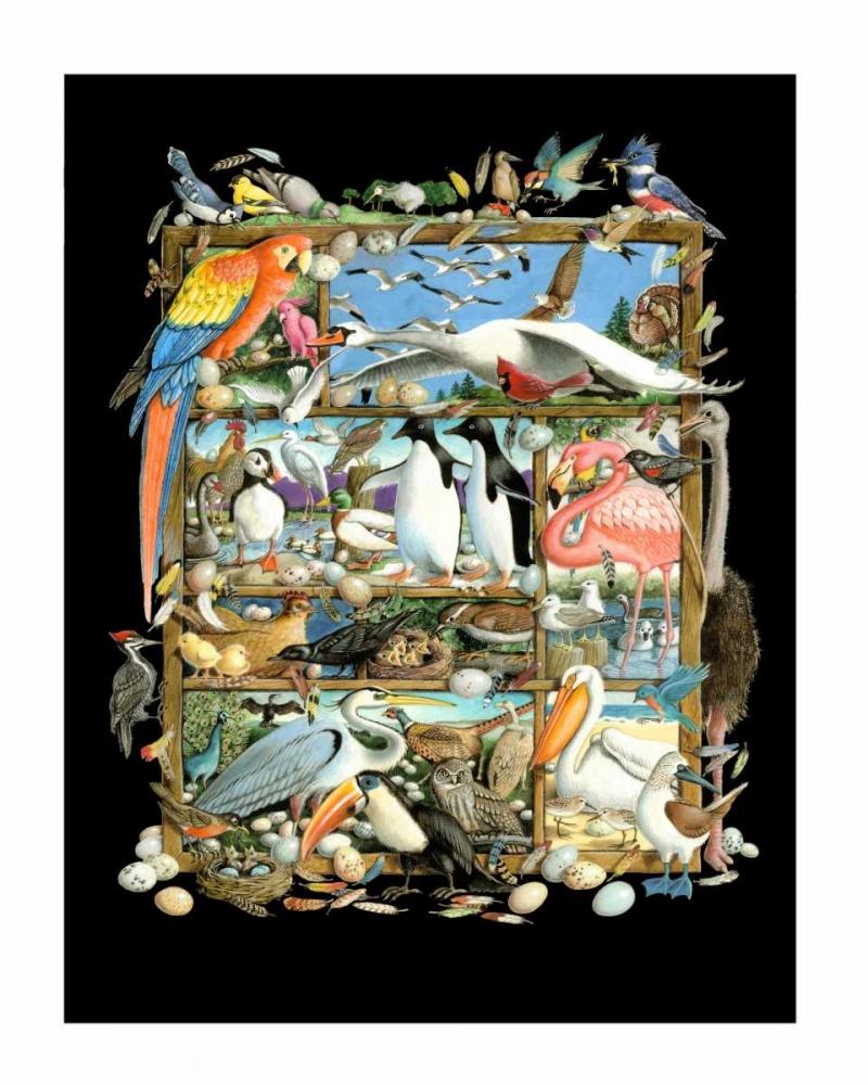 Shadowbox Hunt -Birds of a Fea Seeley, Laura 72545
