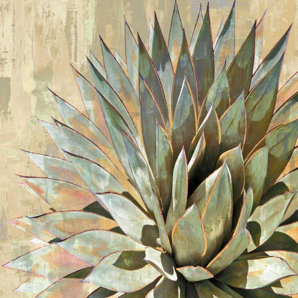 Succulent I Benson, Lindsay 150593