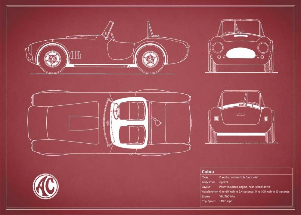 Cobra Red-Maroon Rogan, Mark 125598
