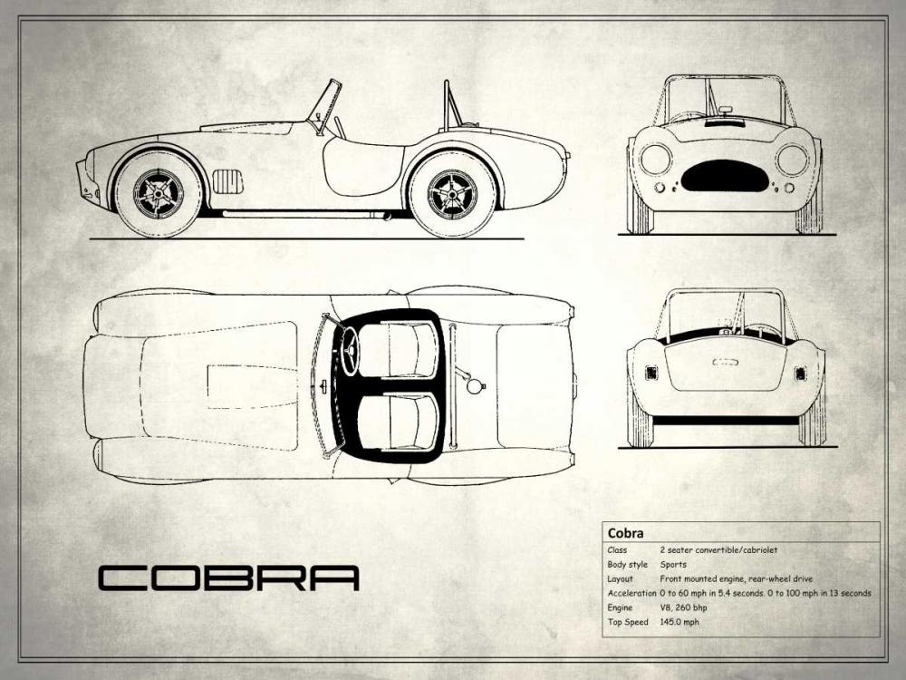 AC Cobra White Rogan, Mark 125368