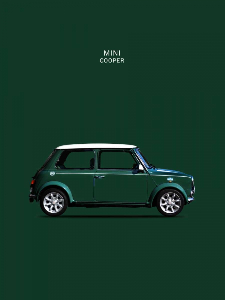 Mini Cooper 1999 Rogan, Mark 125426