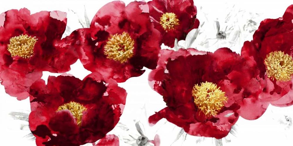 Red Bloom Austin, Vanessa 72683