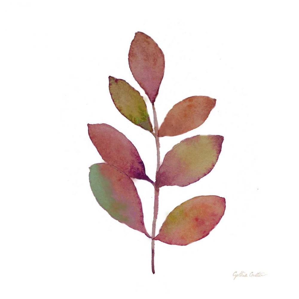 Modern Leaf Study on White III Coulter, Cynthia 106012