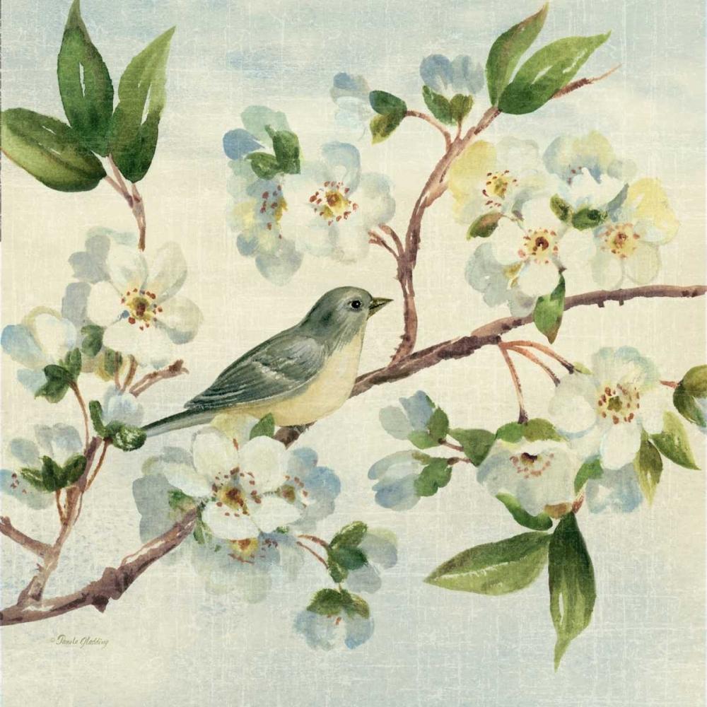 Cherry Bloom Bird II Gladding, Pamela 143082