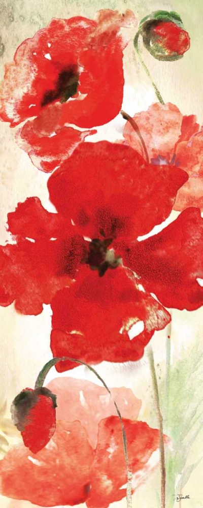 Watercolor Red Poppies Panel I Tre Sorelle Studios 143098