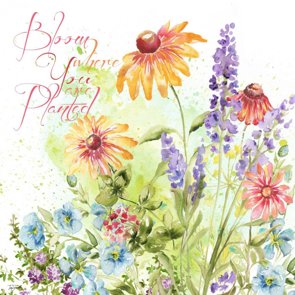 Blossom Meadow I Tre Sorelle Studios 154586