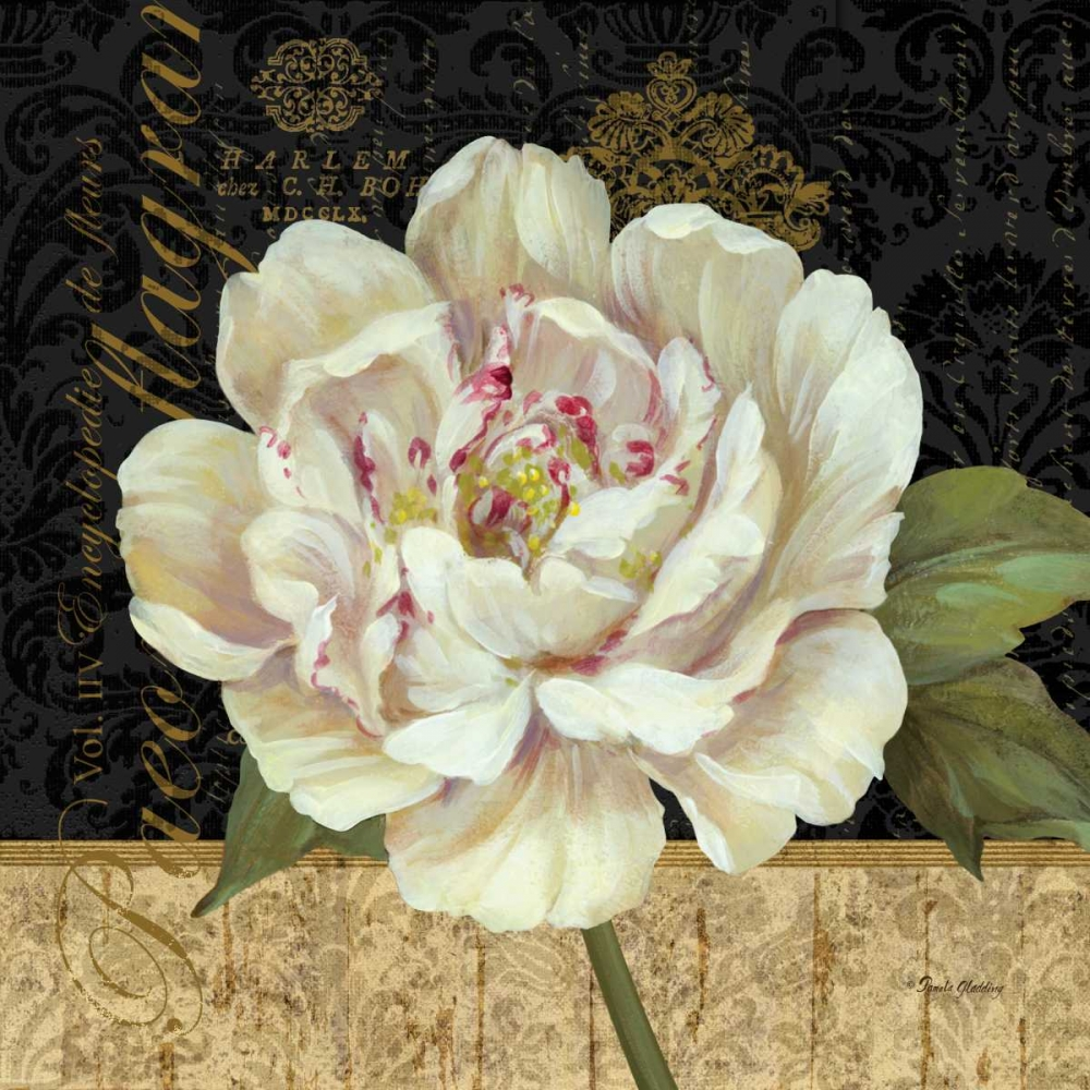 Antique Still Life Peony Gladding, Pamela 59474