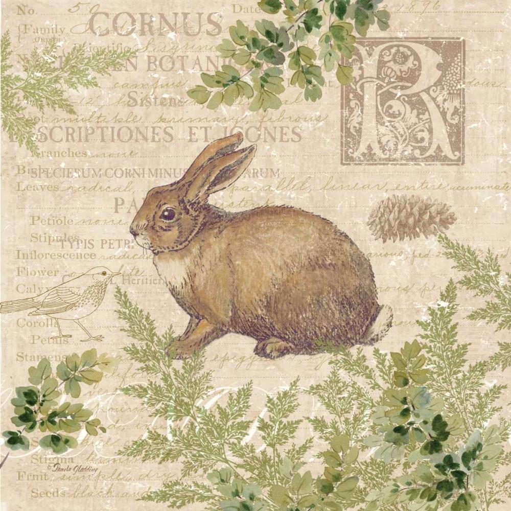 Woodland Trail IV - rabbit Gladding, Pamela 59520