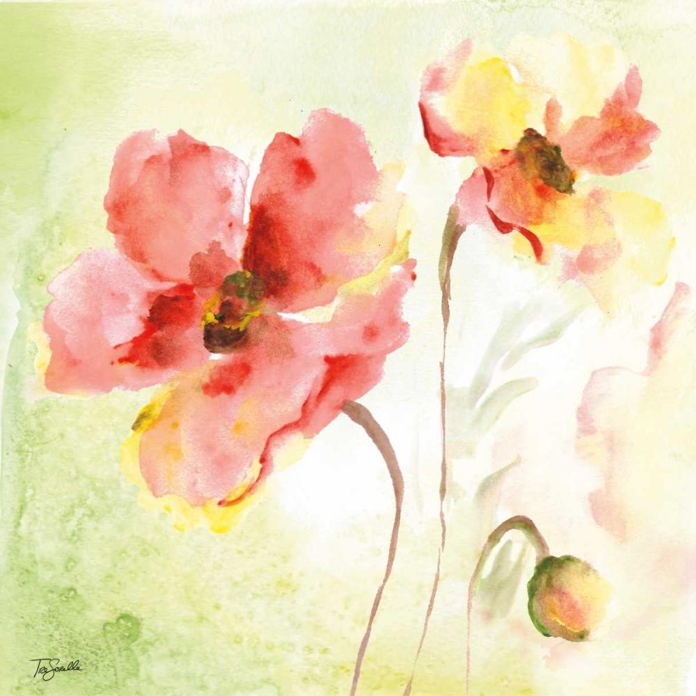 Pale Pink Poppies II Tre Sorelle Studios 70146