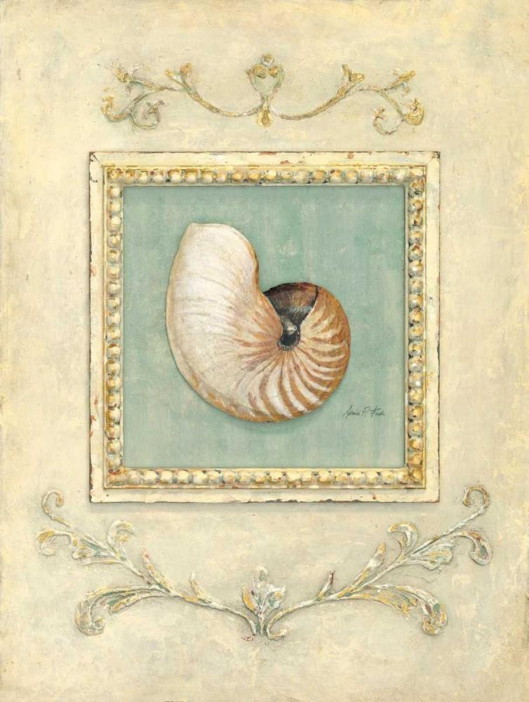 Classic Seashell Detail Fisk, Arnie 56249