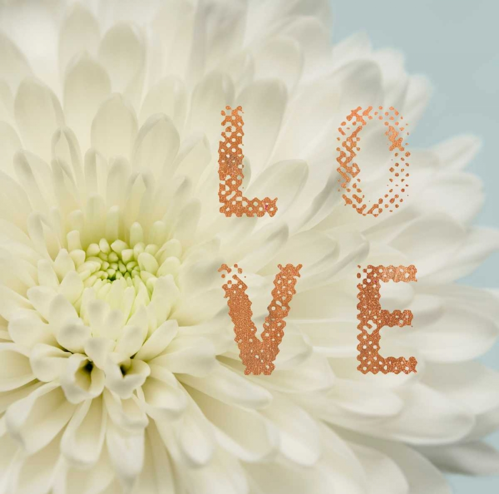 Love Flower Greenwood, Julie 105587