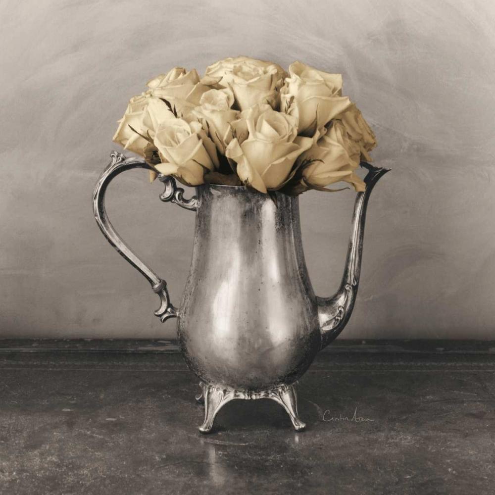 Dix Roses Atria, Cristin 85018