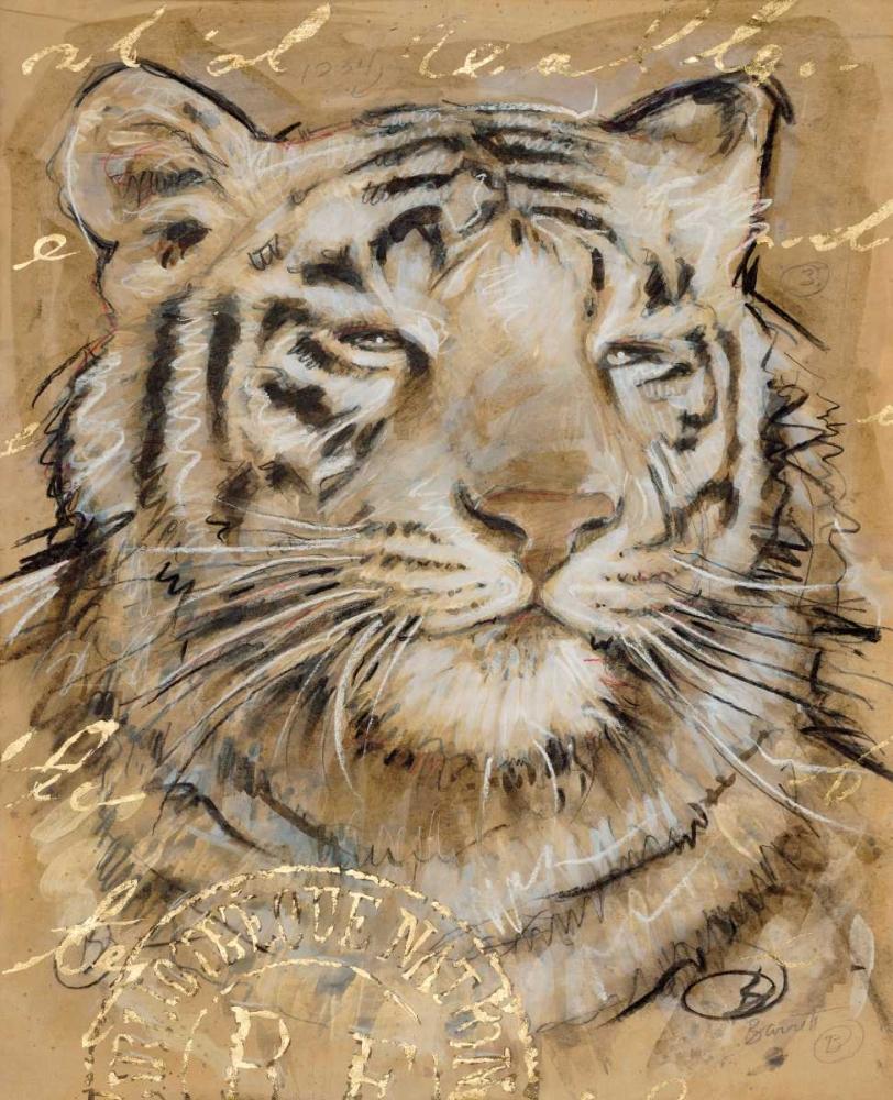 Safari Tiger Barrett, Chad 142050