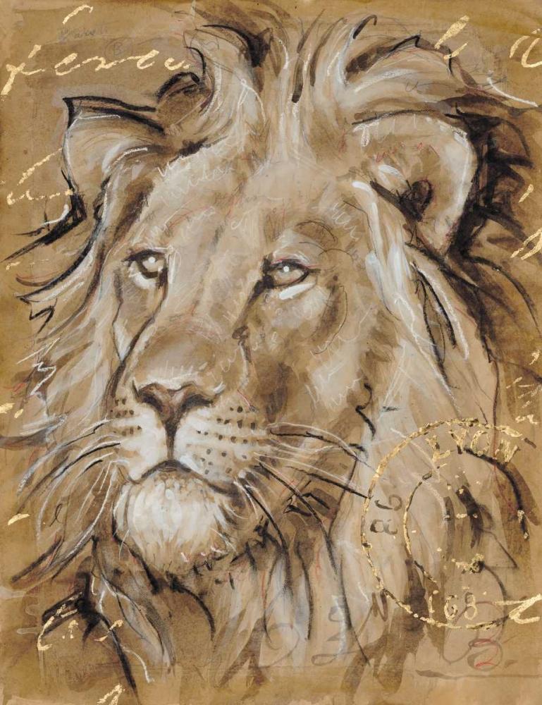 Safari Lion Barrett, Chad 142051