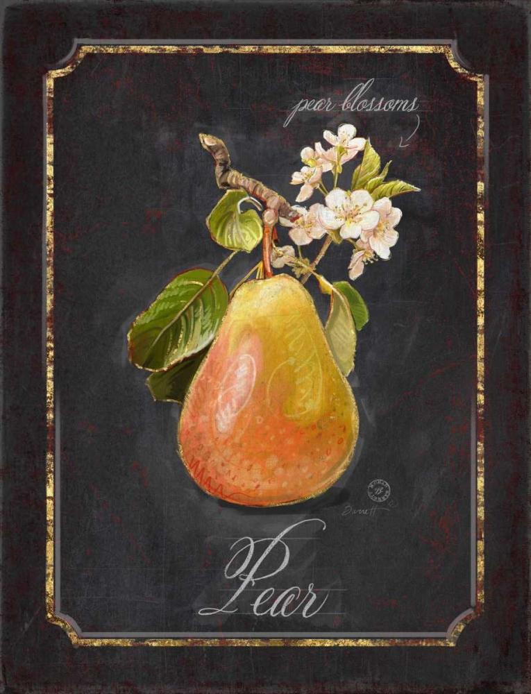 Heritage Pear Barrett, Chad 99601