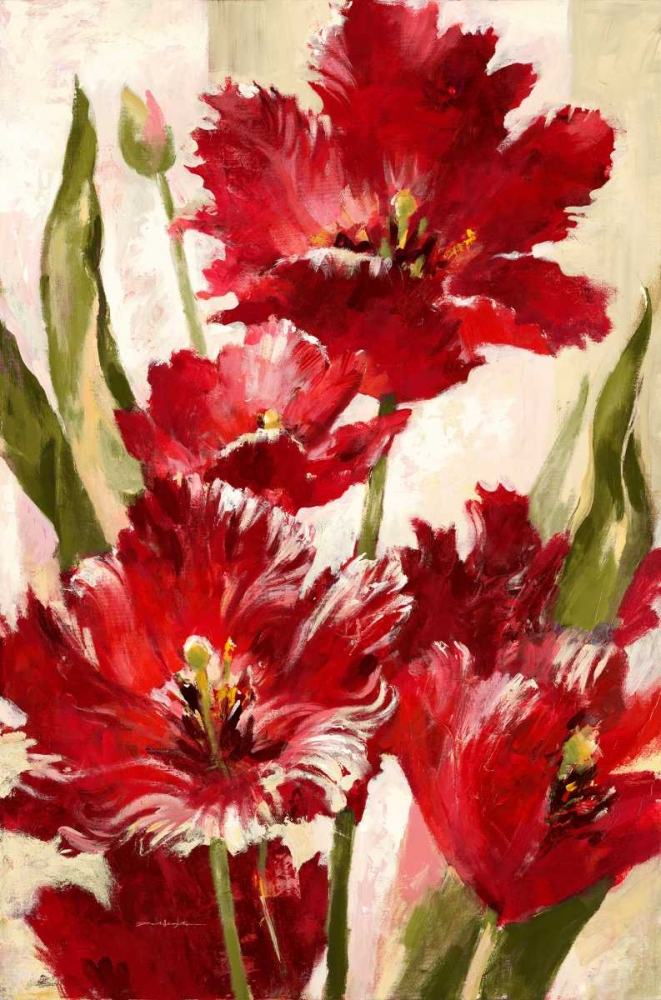 Jubilant Red Tulip Heighton, Brent 56086