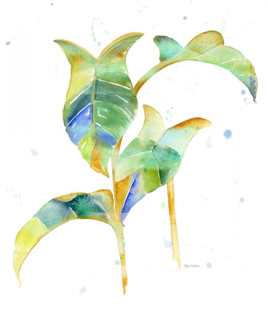 Watercolour Tropical 4 Escobedo, Mary 105624