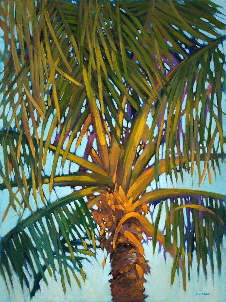 Riviera Palm Charles, J. 105638