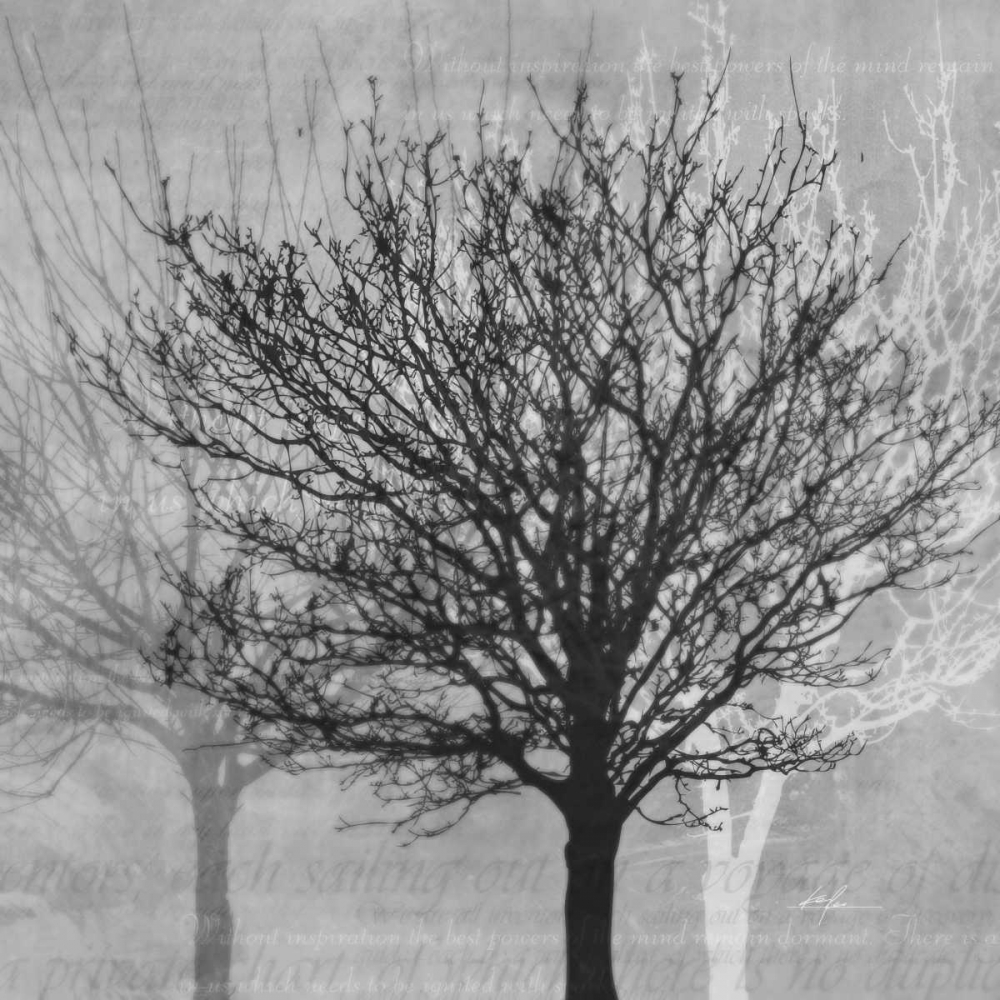 Winter Silhouette 2 Roko, Ken 56542