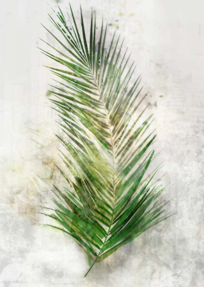 Textured Areca Palm Roko, Ken 105659