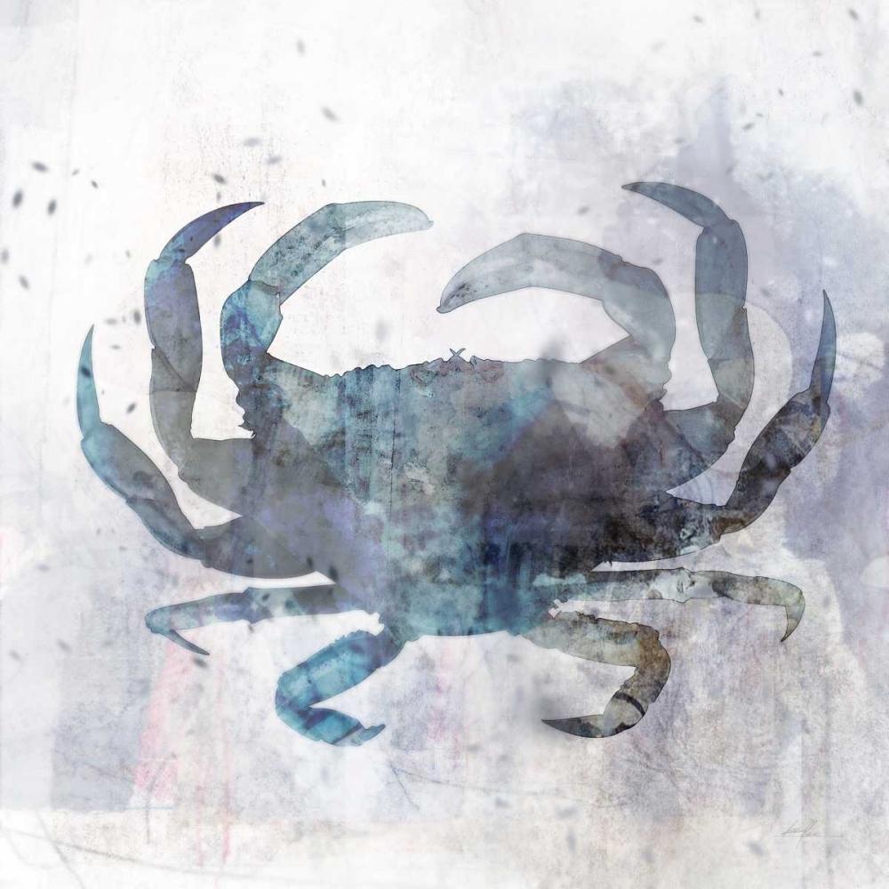 Coastal Mist Crab Roko, Ken 166416