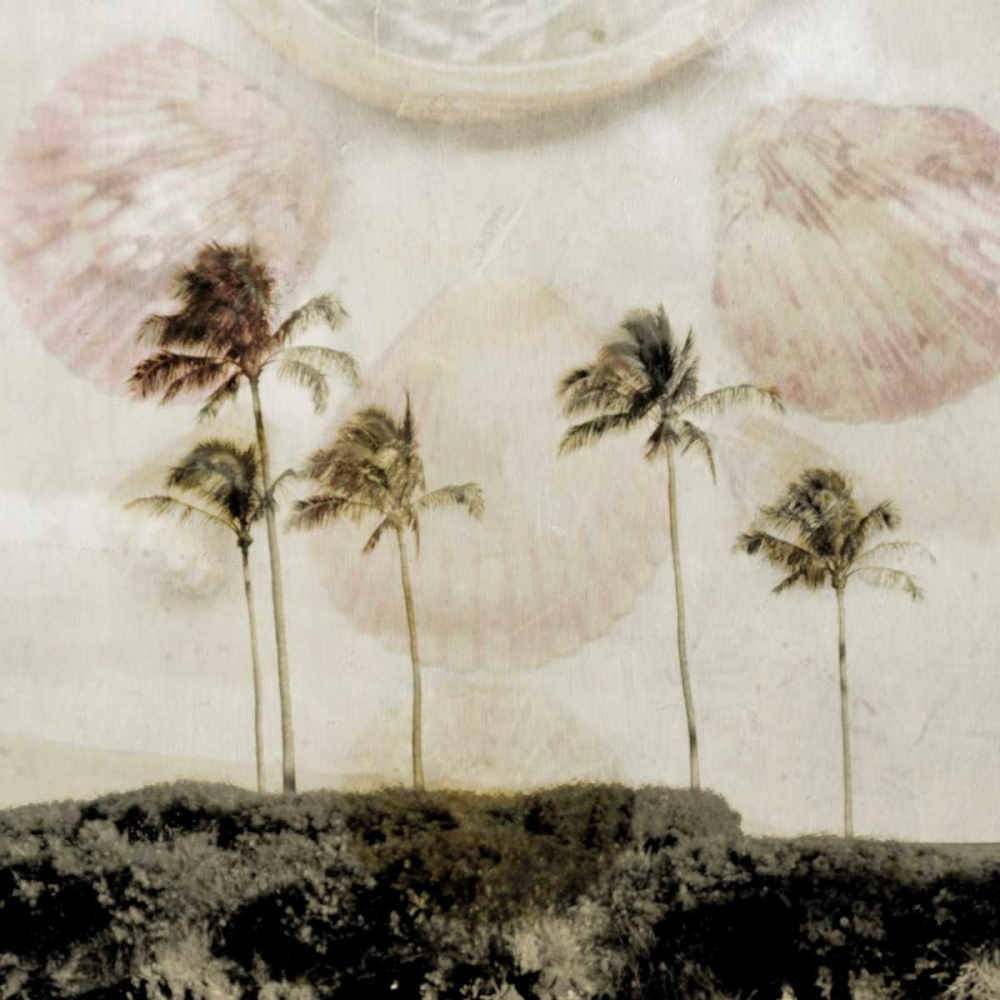 Shells In Paradise 2 Johnston, Heather 166466