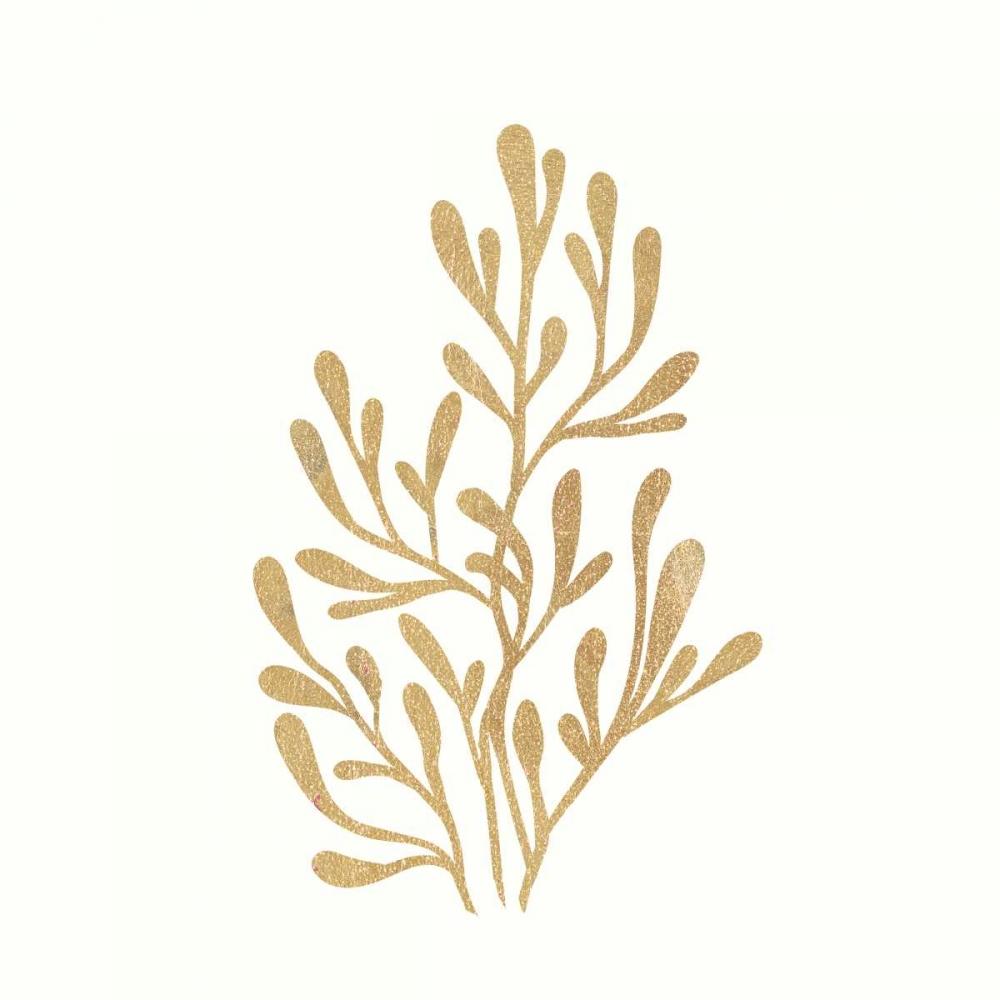 24 Karat Seaweed Ross, Devon 166701