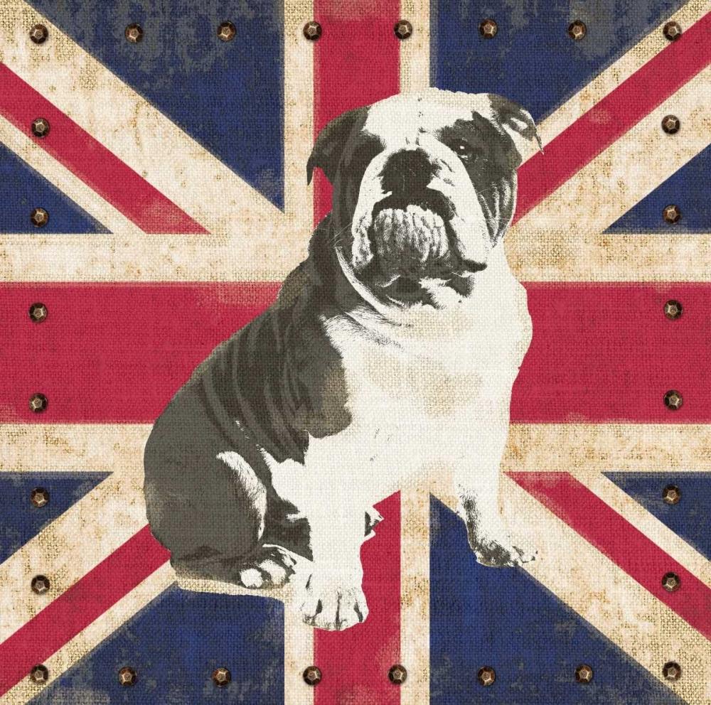 British Bulldog Appleman, Sam 63416