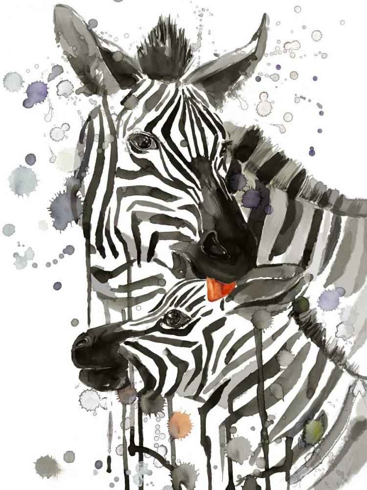 Zebra Kiss Jing, Jin 142184