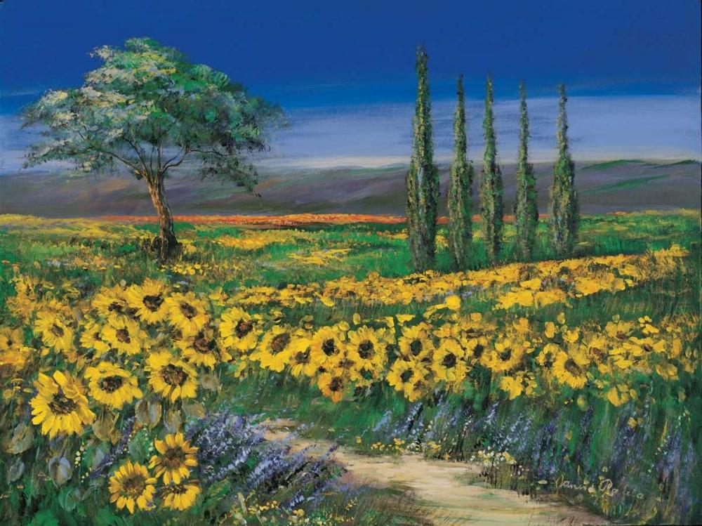 Field of sunflowers Paleta, Anna 57810