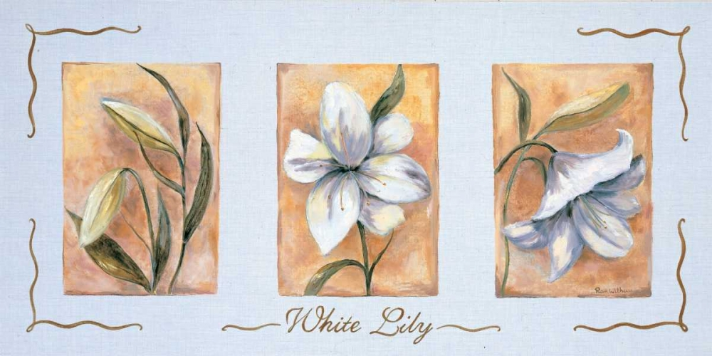 White lily Triptychon Withaar, Rian 59073