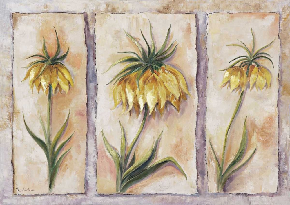 Fritillaria Imperialis Withaar, Rian 58018